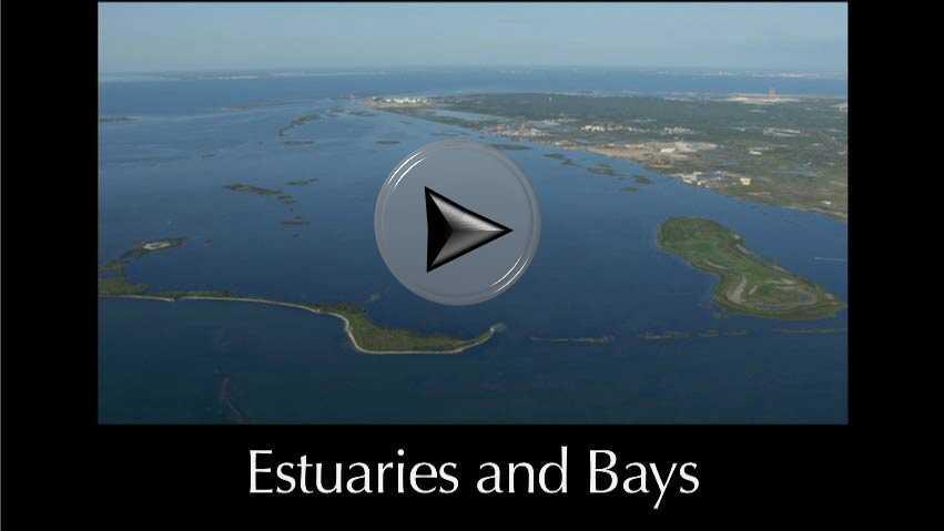 estuarine coastal and shelf science instructions for authors