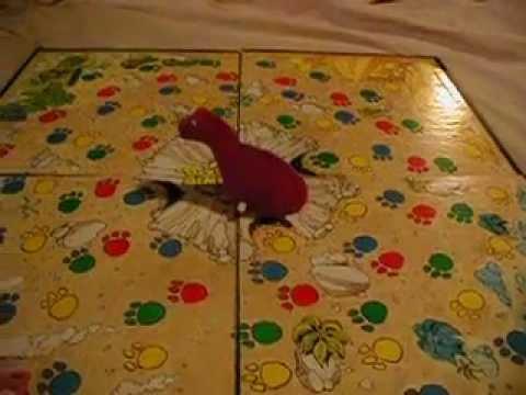 dizzy dizzy dinosaur game instructions