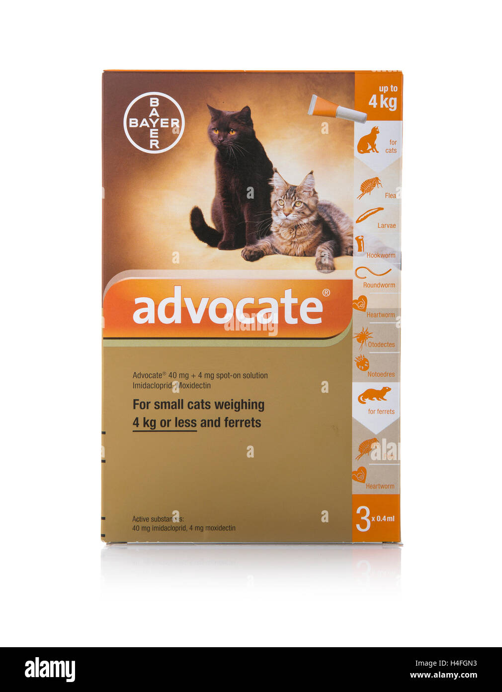 advocate cat flea treatment instructions