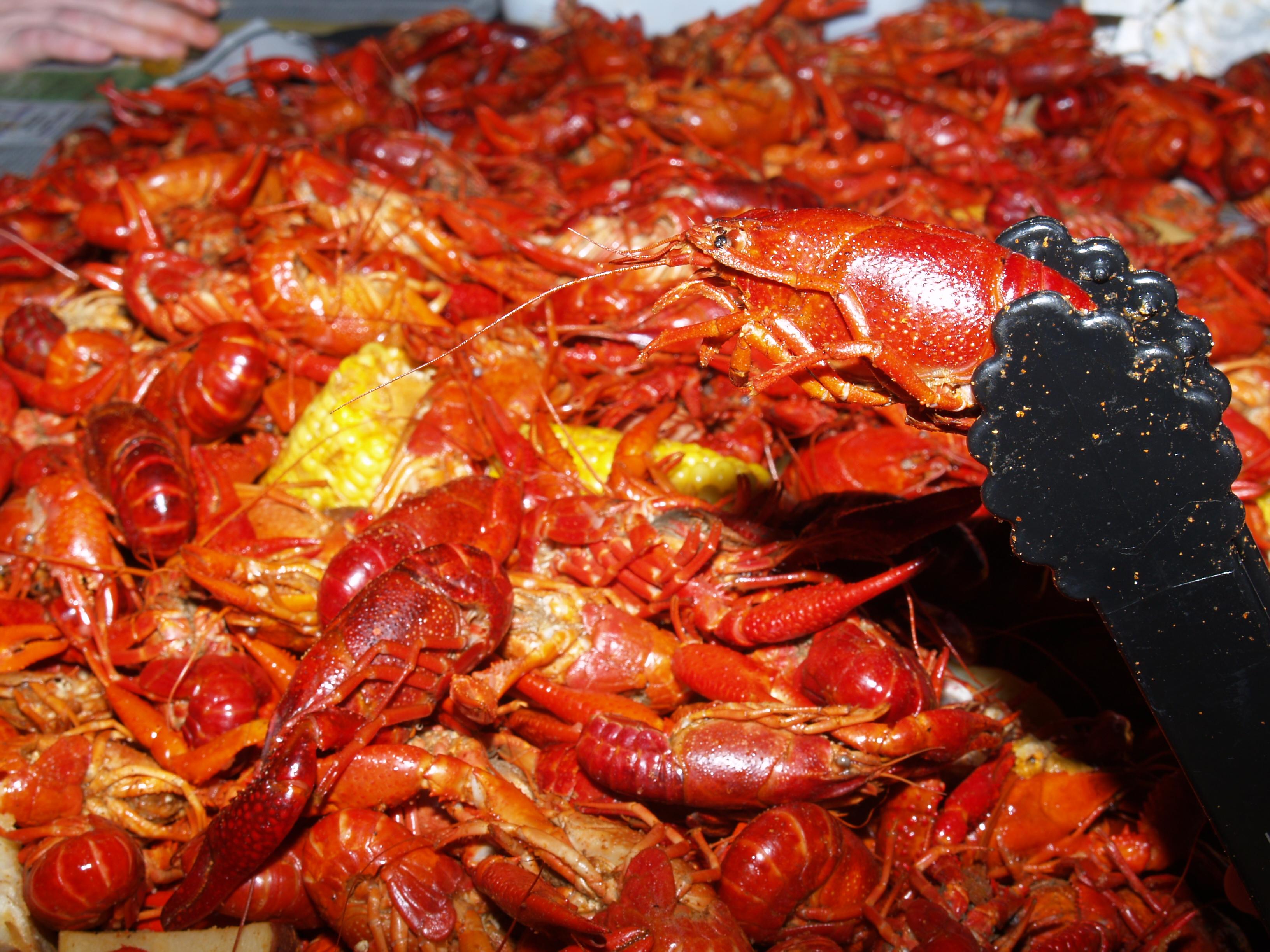 louisiana crawfish boil seasoning instructions
